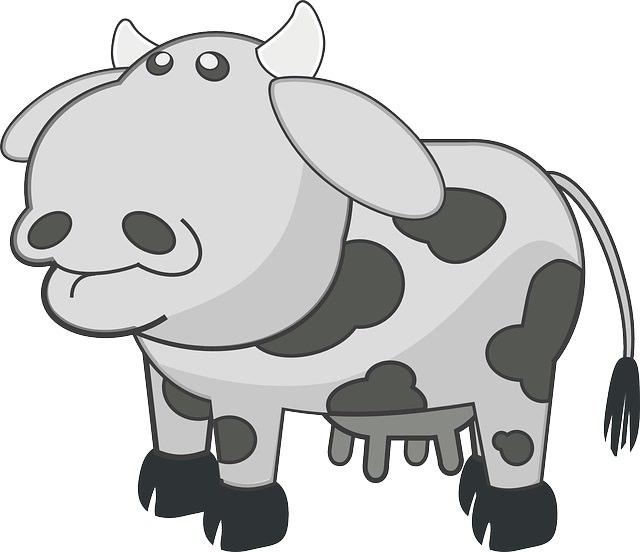 בדיחת פרה