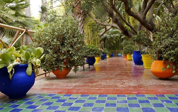 גן בוטני במרוקו