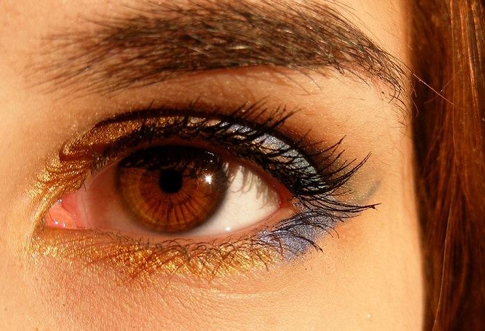 עובדות חשובות על העיניים