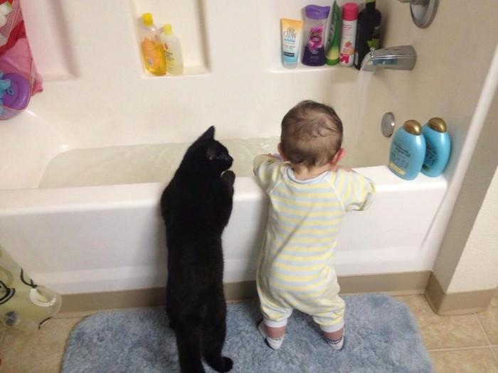ילדים וחתולים
