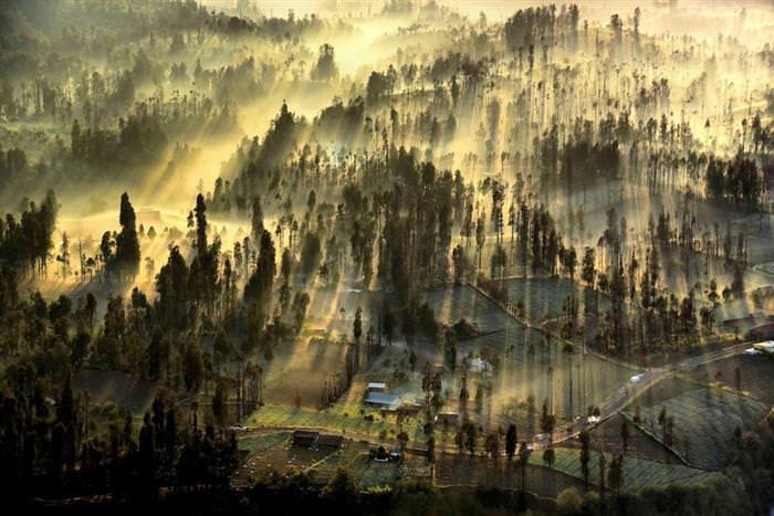 תמונות מדהימות מהאוויר