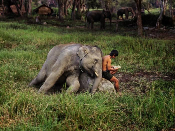 תמונות טבע מסביב לעולם