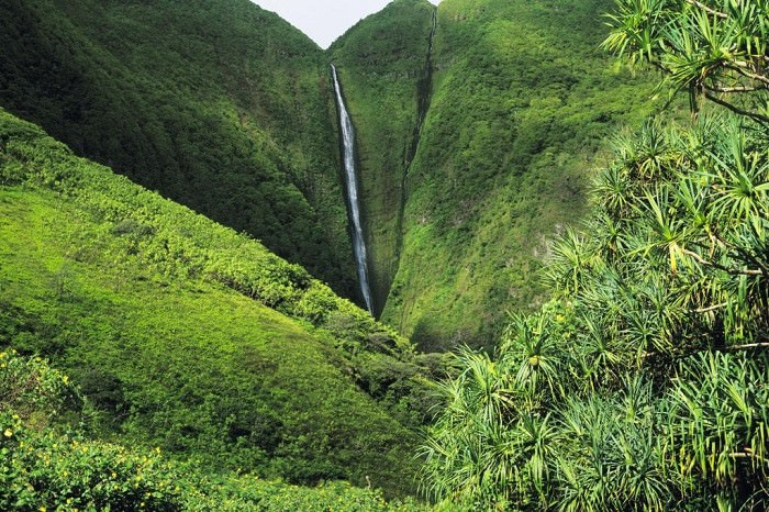 מפלים מדהימים באיי הוואי