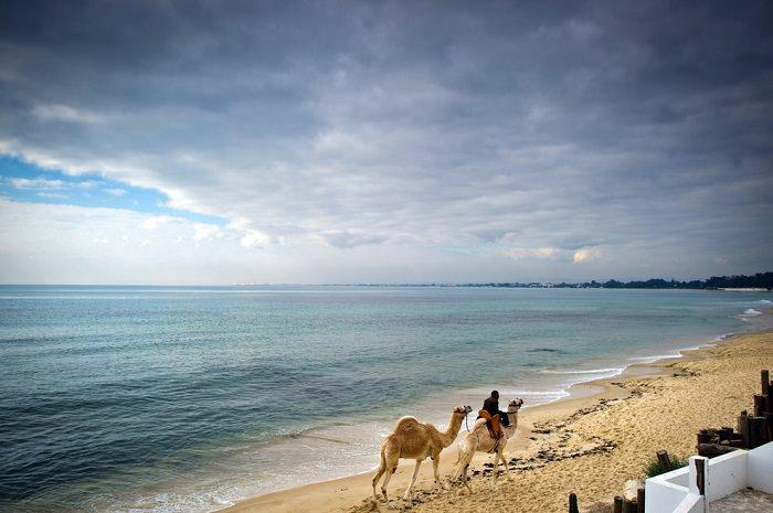 תוניסיה
