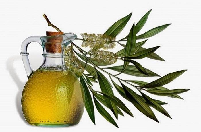 שימושים בשמן עץ התה