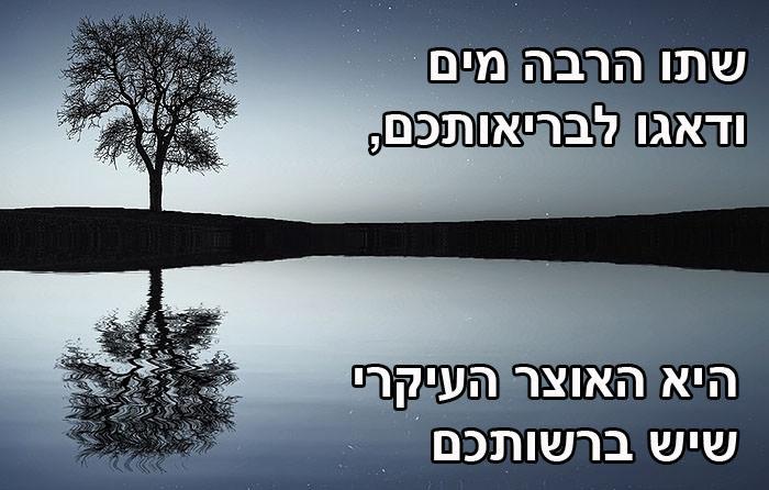 עצות מעץ