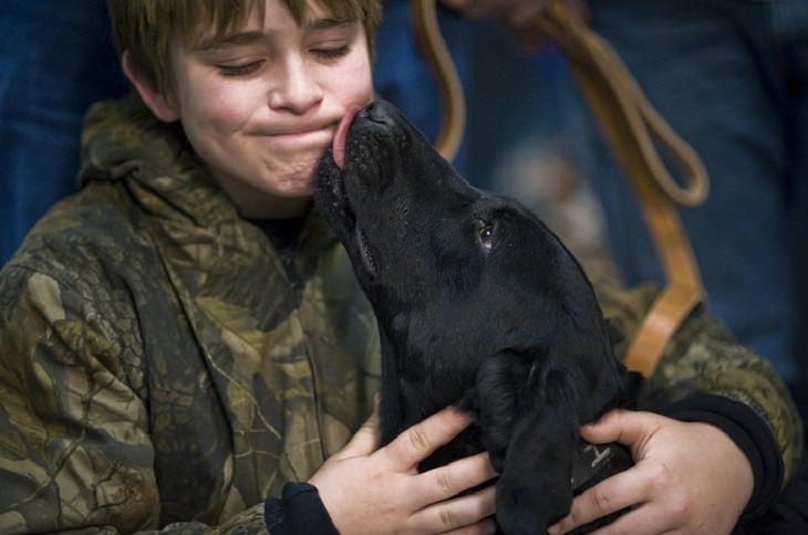 כלב מלקק את פניו של ילד קטן