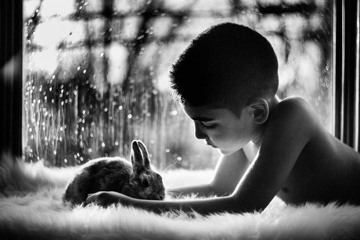 ילד משחק עם ארנב