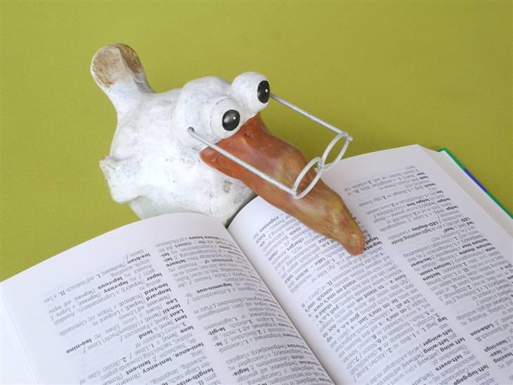 """בובות ציפור """"קוראת ספר"""""""