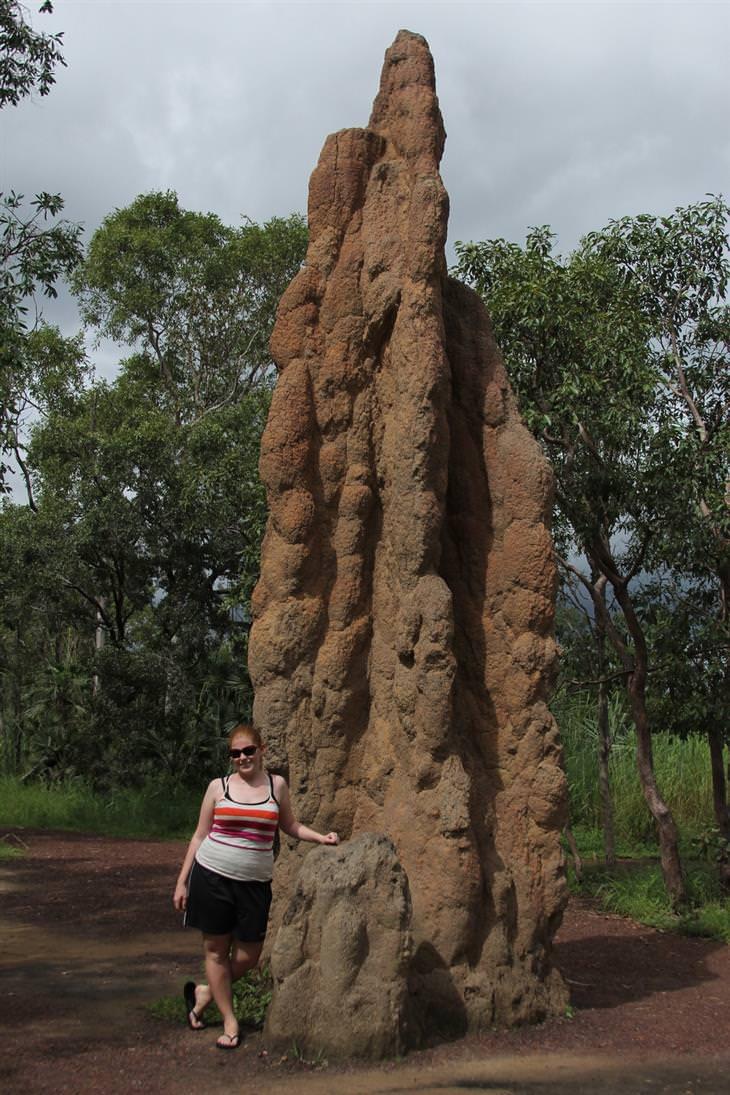 אישה עומדת ליד תל ענק של טרמיטים