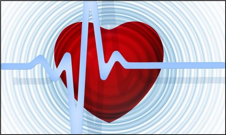 איור של לב