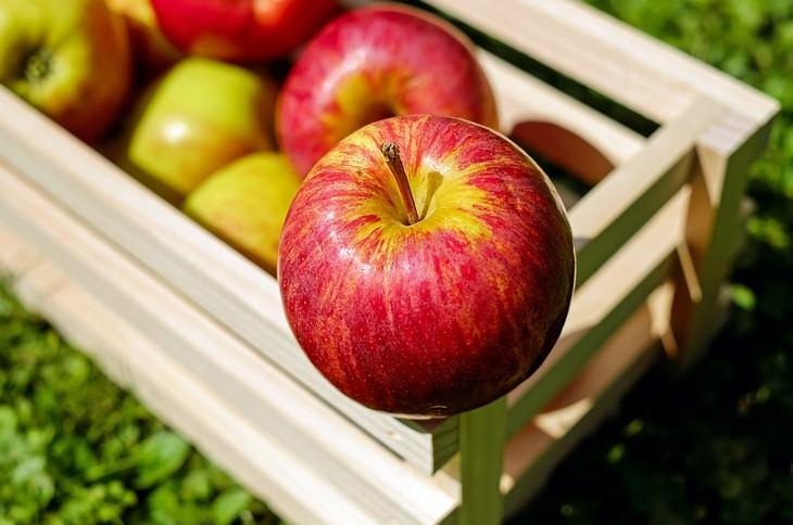 תפוח אדום עומד על ארגז תפוחים