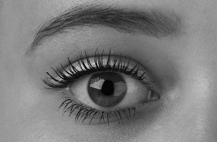 עין עם מסקרה בריסים