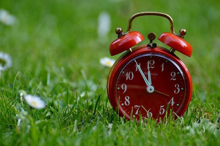 שעון מעורר אדום על דשא ירוק