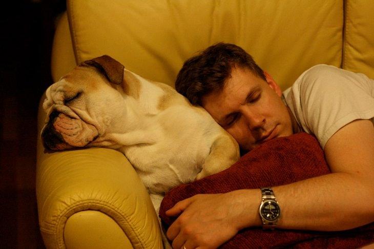 גבר וכלב ישנים על הספה