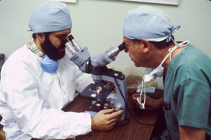 שני רופאים מסתכלים בתוך מיקרוסקופ
