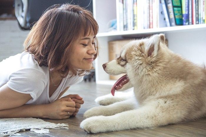 בעיות התנהגות אצל כלבים ופתרונות