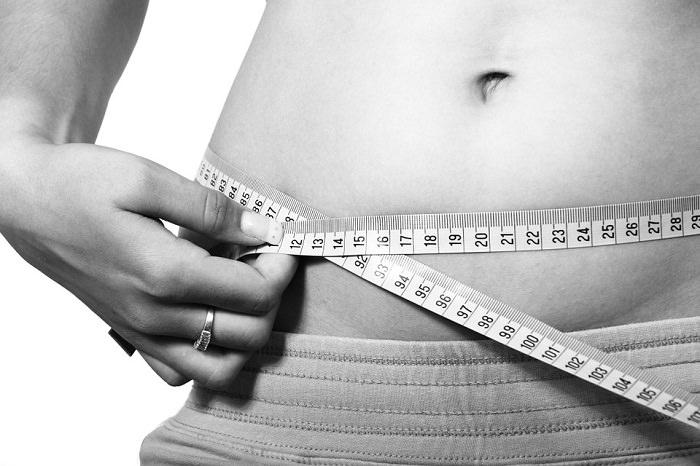 דיאטת דש ומתכונים