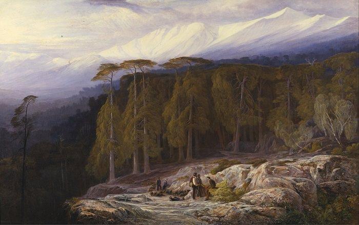 משל גברים ביער