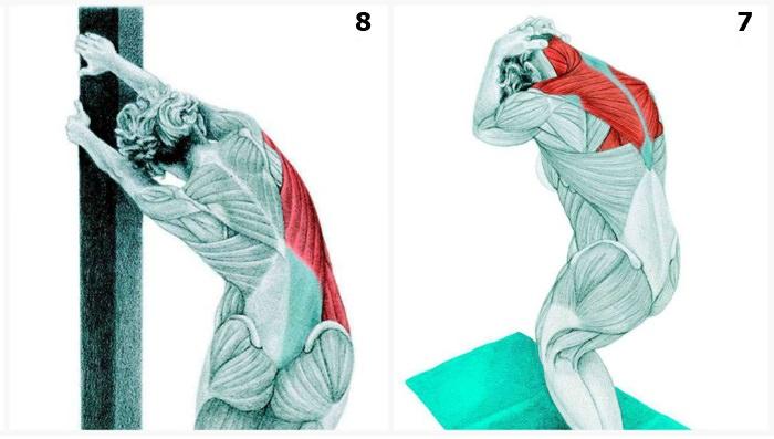 תרגילי מתיחה של השרירים