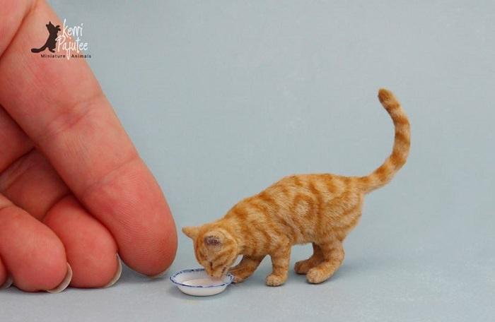 חיות קטנטנות