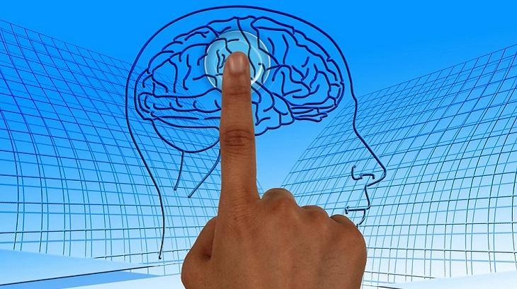 מאכלים למניעת שבץ מוחי