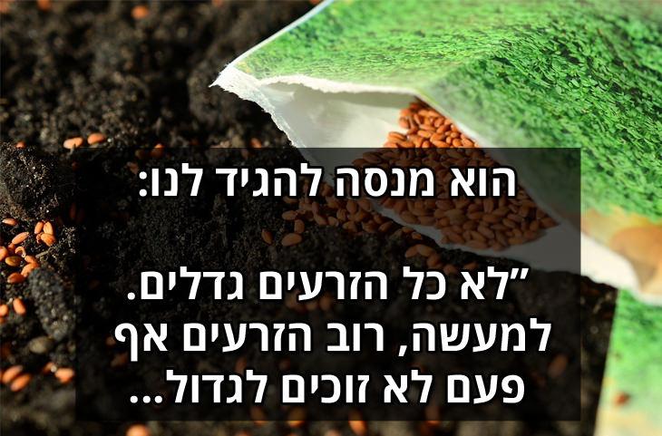 חוק הזרעים