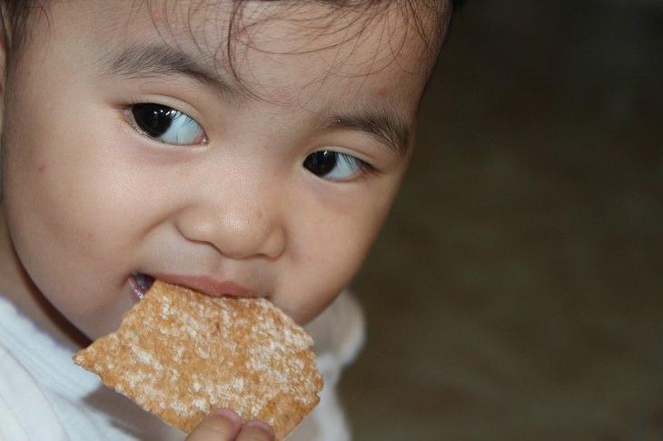 ילד קטן אוכל עוגייה
