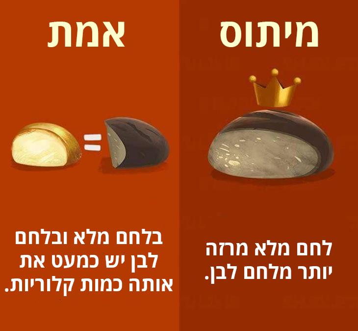 בלחם לבן ולחם מלא יש כמעט את אותה כמות קלוריות
