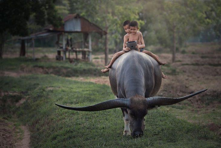 18 תמונות מדהימות מרחבי העולם