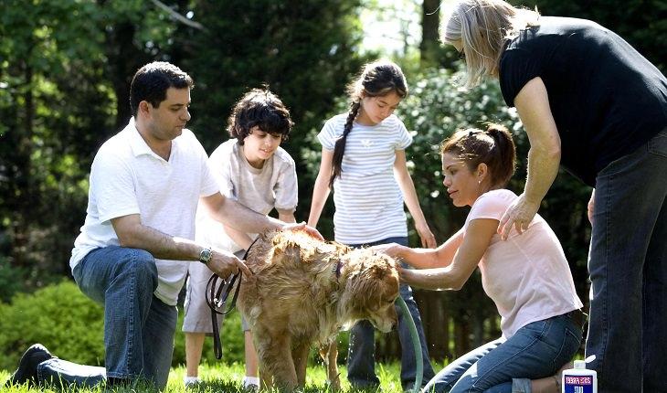 משפחה מבלה בגינה ושוטפת כלב