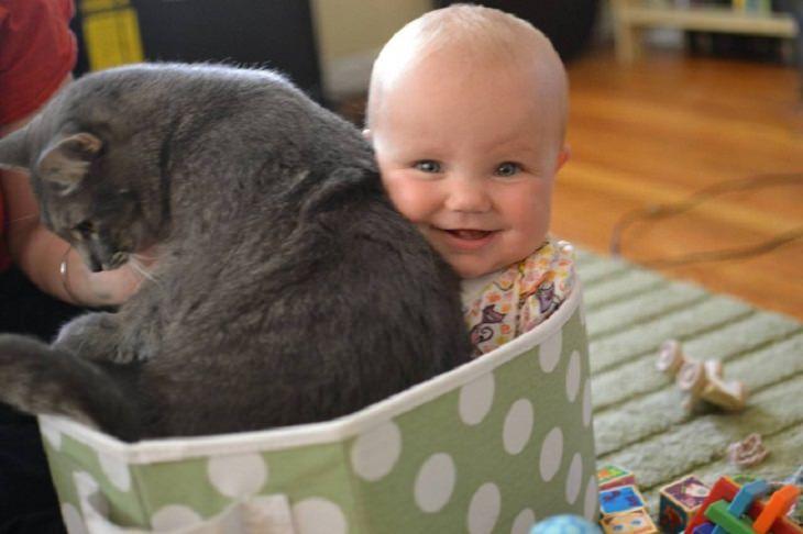 תינוק וחתול יושבים בתוך קופסה