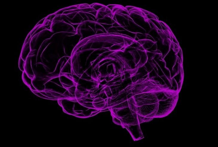 איור של מוח סגול על רקע שחור