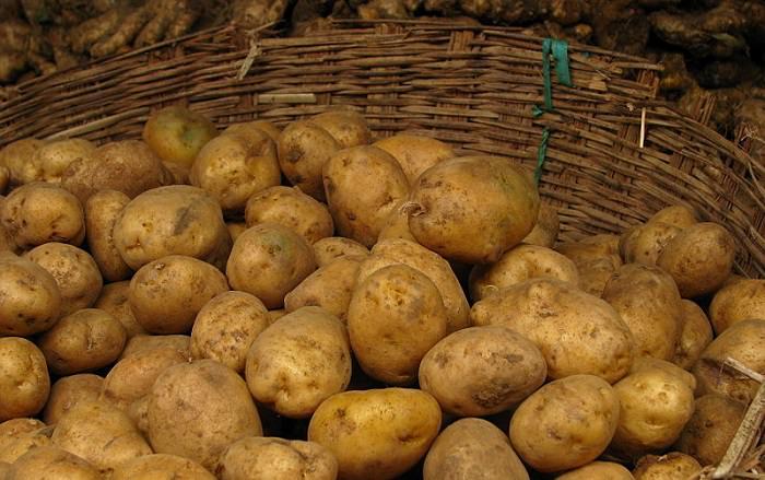 תפוחי אדמה בסלסילת קש