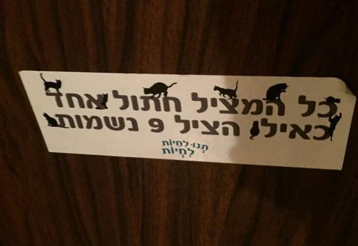 שלטים מצחיקים מישראל: מדבקה שכתוב עליה כל מי שהציל חתול אחד כאילו הציל תשע נשמות