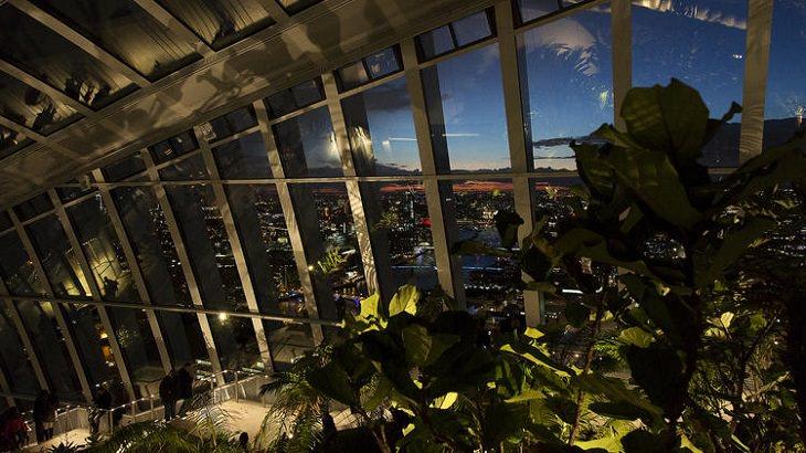 מבט על הנוף של לונדון מלמעלה ליד עציץ