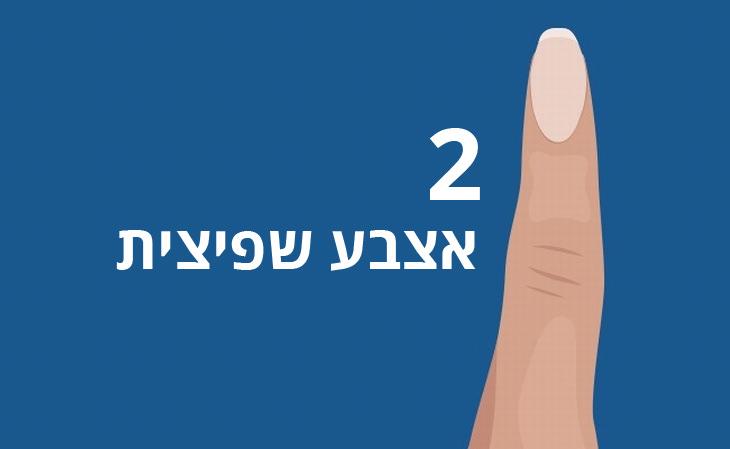 2 - אצבע שפיצית