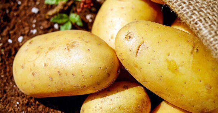 תפוחי אדמה