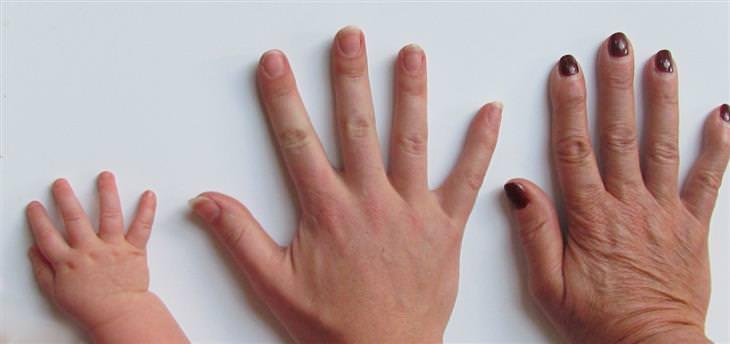 שלוש ידיים אחת לצד השנייה של אישה מבוגרת, צעירה ותינוקת