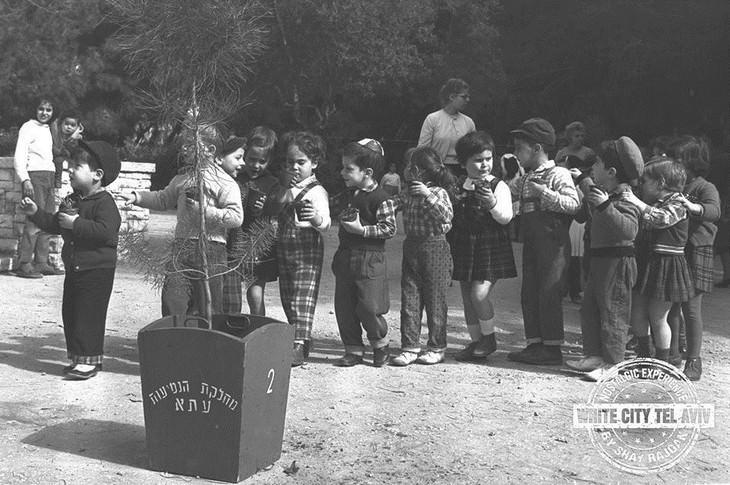 """חגיגות ט""""ו בשבט בגן מאיר, ילדים רוקדים ואוחזים בשתילים חדשים לכבוד הנטיעות. תל אביב 1963, צילום: משה פרידן, לע""""מ."""