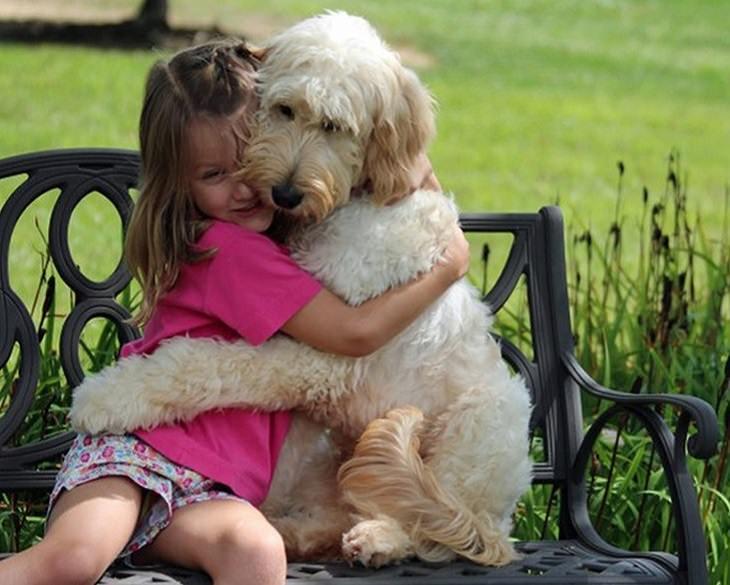 ילדה וכלב גדול מחובקים על ספסל