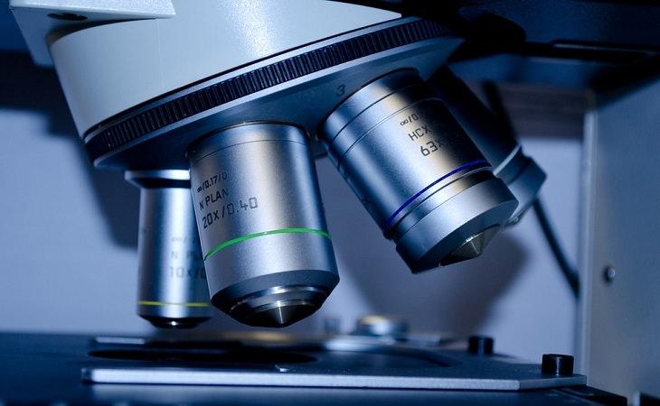 מיקרוסקופ בוחן בדיקה