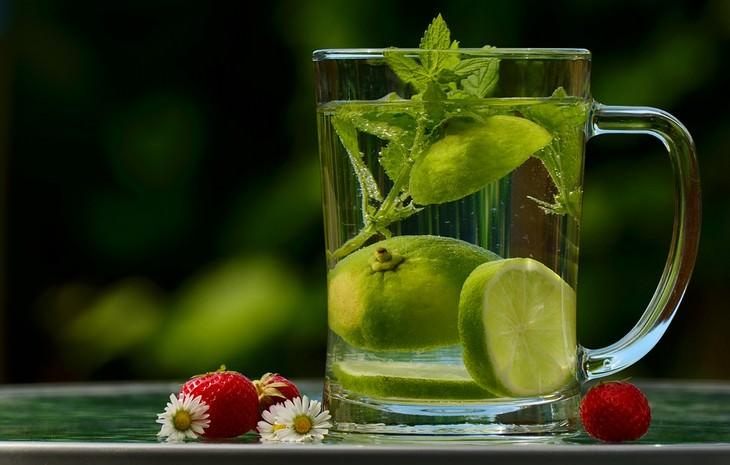 כוס של תה עם עלי מליסה ולימון פרוס בתוכה