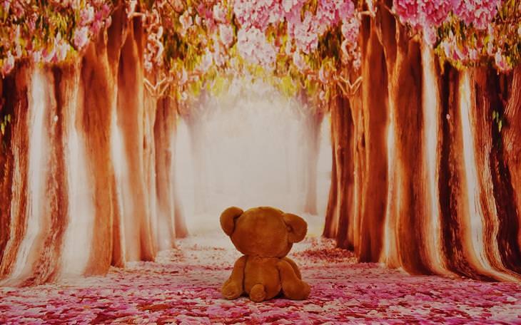 צעצוע של דובי יושב על שביל פרחוני בין עצים, עם הגב למצלמה