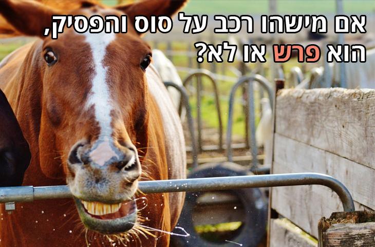 אם מישהו רכב על סוס והפסיק, הוא פרש או לא?