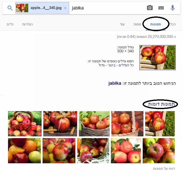 הסבר על חיפוש תמונה בגוגל באמצעות תמונה אחרת