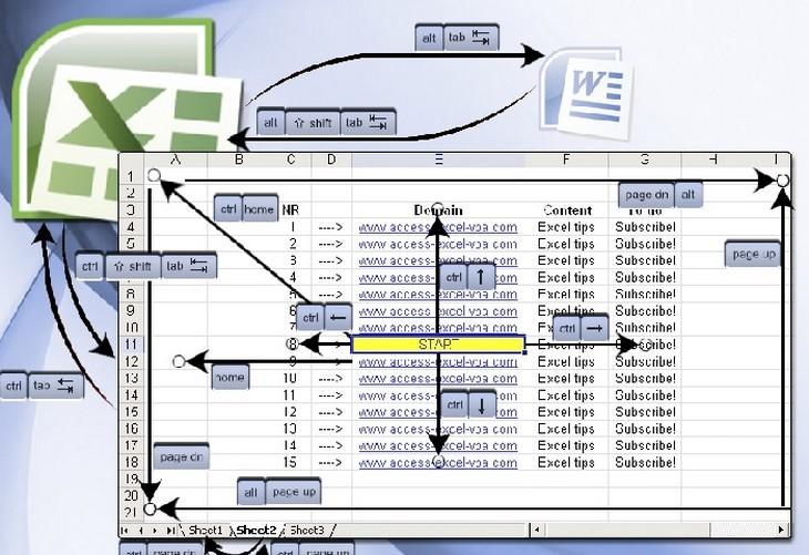 צילום מסך של תכנת אקסל עם חיצים מאוירים עליה
