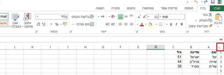 צילום מסך של בחירת כל הנתונים באקסל