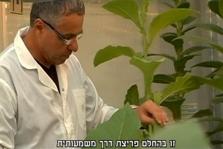 אוסף כתבות על חדשנות ישראלית