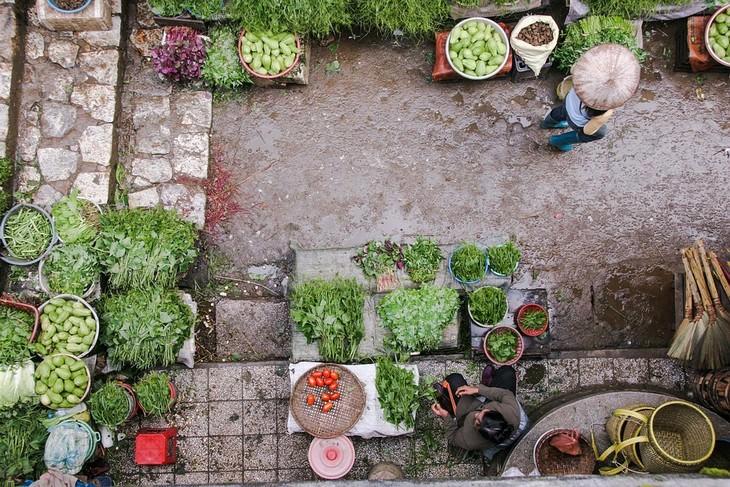 גינת ירק בצילום מלמעלה